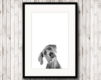 Dog poster, dog print, animal poster, black and white photography, printable dog,poster digital,nursery art,digital dog download, minimalist