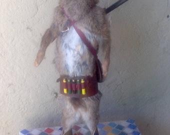 Rabbit hunter