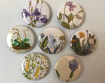 Flower Magnets - set of 7
