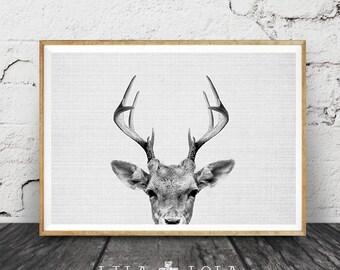 Deer Wall Art Print, Deer Head, Antlers, Woodlands Nursery Animal, Digital Download, Large Horizontal Poster, Black and White, Nursery Decor