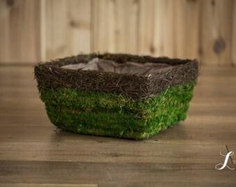 Newborn Basket Photography Prop, Moss Basket