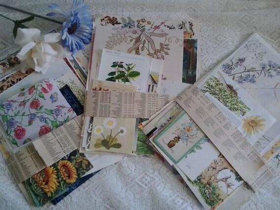 Vintage Paper Flowers Floral Flora Plant Images Pictures