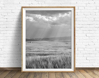 "nature photography, large art, printable art, instant download printable art, black and white, digital download, gray, art - ""Silver Fields"""