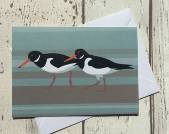 Oystercatcher birds greeting card - blank inside