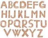 "Wood alphabet clipart: ""KIDS ALPHABET"" wood texture alphabet Wood Letters watercolor alphabet wood fonts Png Alphabet Hand Painted"