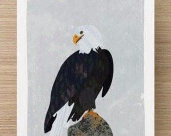 Alaskan Birds 5x7 Prints