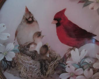 Cardinal Collector Plate 'Morning Serenade' by Lena Liu