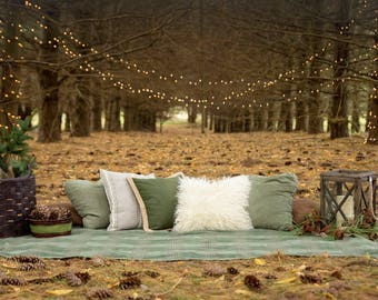 Picnic in the Woods Scenic Printed Backdrop (SC-BW-001)