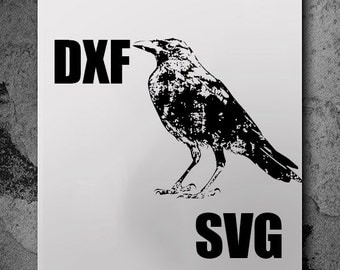 Crow Svg, svg files, silhouette cameo, svg cutting, svg file, silhouette files, cutting files, dxf files, cut files, svg cutting files
