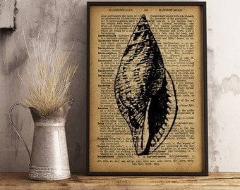 Seashell Dictionary Poster, Seashell poster, Beach House decor, Nautical Print, Antique Seashell Illustrations, Shell Print (KR05)