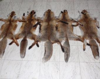 Handmade Fox Pelt,Animal Pelt,Soft Leather,Fox Pelt,Hunting Trophy,Skin,Trophy Pelt,Tan Hide,Pelt,Fox