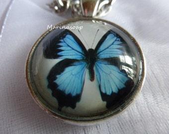 Blauer Schmetterling, Cabochon Anhänger, Cabochon Kette, Kette mit Anhänger, Gliederkette, Schmetterling, Glascabochon, Valentinstag