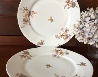 Antique Haviland & Co - Salad Plates - Limoges Porcelain Floral - Set of 2 - 1800s