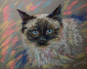 Cat Custom Portrait Pet Pastel Portrait To Order Cat Portrait On Paper Anniversary Gift For Cat Lover Sympathy Gift Animal Portrait Pastel