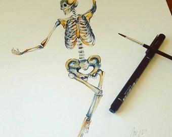 Watercolour Anatomy Art- Complete Skeleton