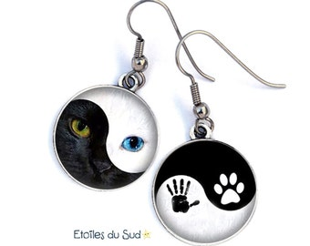 Earings cats, yin and yang, surgical steel hooks, ref.316