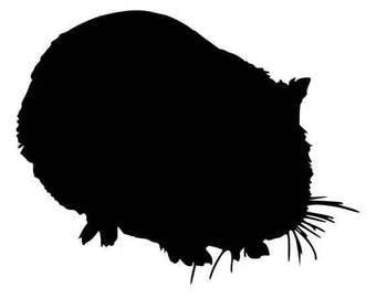 Guinea Pig - Sticker/ Vinyl / Decal
