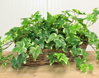 Variegated Ivy Silk Foliage Arrangement In Basket