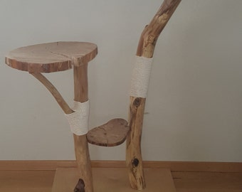 Wood and teak, natural scratching, scratching to measure