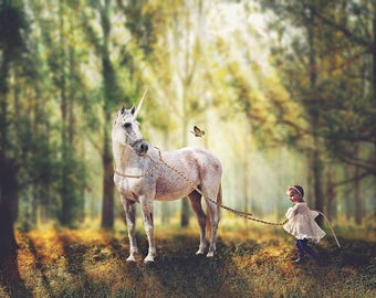 Unicorn Princess Forest Digital Backdrop - Woods - Forest Digital Background - Boys, Girls, Children Portrait Sessions - Fantasy Background