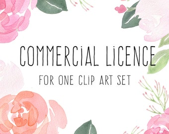 Commercial Licence - 1 set