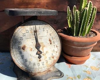 Antique 25lb Kitchen Scale, Rustic Kitchen Decor, Photo Prop, County Kitchen
