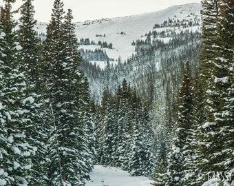 Winter Wonderland Photography Print, Rocky Mountain Photography, Fine Art Photography Print
