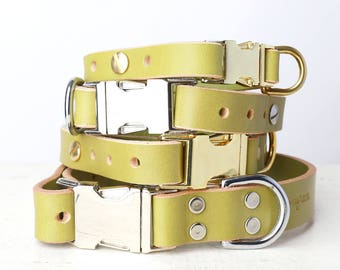Green Leather Dog Collar -- Classic Side Release Style