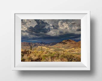Desert Landscape Print, Southwest, Desert Art, Desert Photography, Wild West, Wall Art, Art Print, Cactus, Big Sky, Instant Download Art