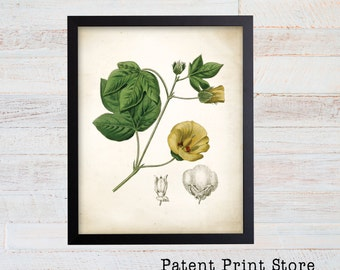 Vintage Cotton Print. Botanical Print. Art Print. Cotton Art. Antique Botanical Prints. Wall Art. Farmhouse Decor. Farmhouse Sign. Was Art.