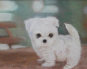 Little dog, framed drawing by pastel