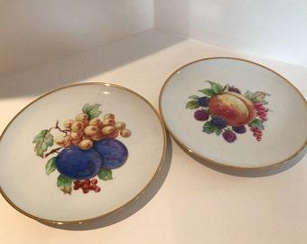 Vintage Set of 2, Bavaria Fruit Plates Made in Germany