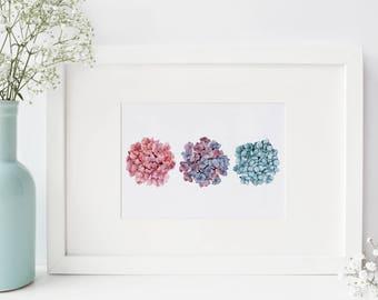 Pink, Purple and Blue Hydrangeas Watercolor PRINT - 5x7, hydrangea art, botanical print, botanical art, botanical art prints