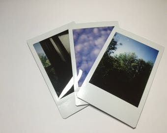 Polaroid Picture
