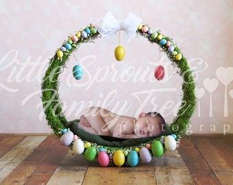 TWO newborn digital backdrop background Easter wreath
