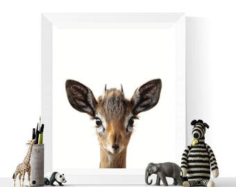 Baby Deer Print | Woodland Animal Printables | Nursery Decor | Baby Deer Printable | Woodland Animals | Baby Art | Photo Art