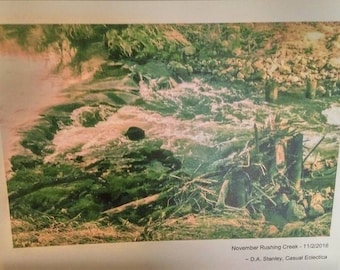November Rushing Creek (8x10 Art Print)