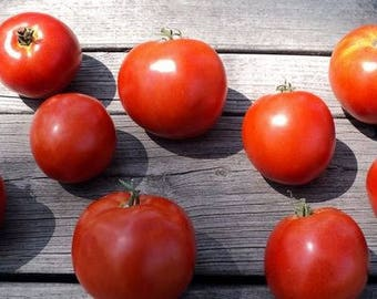 Manalucie Tomato Seeds, FREE SHIPPING, Heirloom Seeds, 40 seeds, Rabbit Rescue Donation