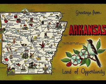 Arkansas MAP Postcard Picture Illustrated Bird Flower Greetings Postcard AR PC
