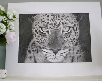 Leopard original graphite drawing
