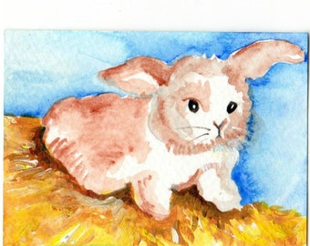 ACEO Original Bunny Rabbit watercolor painting, bunny art card, small animal art, SharonFosterArt