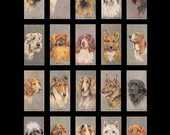 Domino Dogs No. 2 - 1x2 - Digital Collage Sheet - Instant Download