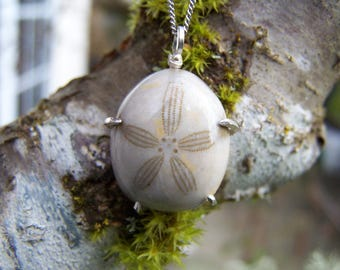 Sea Urchin Fossil, sterling silver prong setting, ball and chain necklace