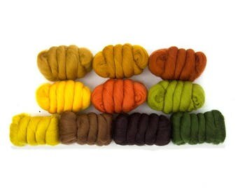 ON SALE Autumn Leaves Merino Variety Pack - 10 colors - 25 grams each color = 250 grams or 8.8 oz total to Spin, Felt, Fiber Art
