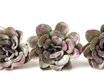 Fake Succulents - One Antique Inspired Aeonium Succulent in Pink and Green - faux succulents, artificial succulents - ITEM 0268