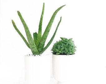 Matte White Planter Pot