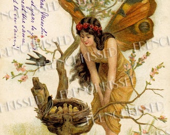 Butterfly Fairy Checking out Nest Full of Baby Birds Altered Antique Victorian Fantasy Postcard Digital Printable
