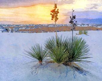 Yucca at White Sands Desert Southwestern Cactus New Mexico Sunset Southwest Illustration Print Giclée Wall Hanging Decor Poster Fine Art