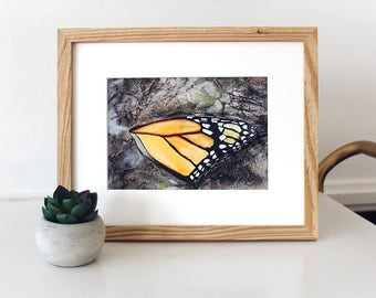 BEAUTIFUL DECAY Watercolor Mixed Media Butterfly Painting, Monarch Butterfly