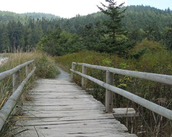 Giclee Print Landscape Boardwalk bridge Whidbey Island Photograph by RSalcedo FFAW Free Shipping